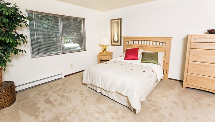 Spacious bedroom with plush carpeting