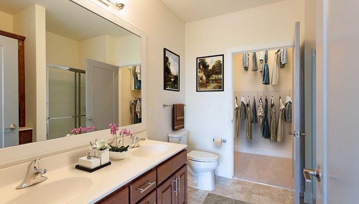 Master Bathroom with His and Her Sinks